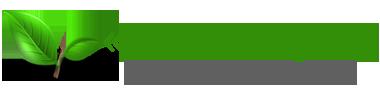 Интернет-магазин «Семена трав». Продажа семян медоносов, сидератов, бобовых и злаковых культур. Быстрая доставка по Украине, лучшие оптовые цены. Logo